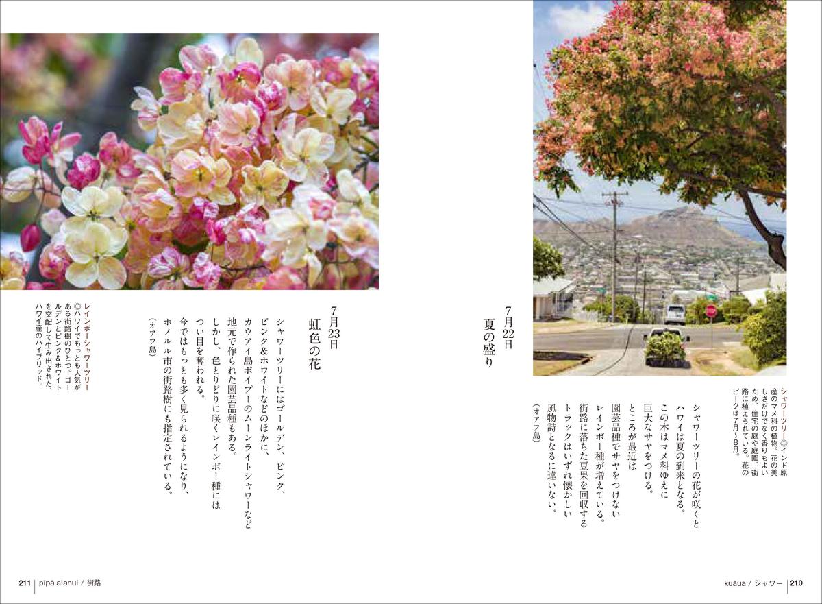 f:id:mojiru:20200512082128j:plain