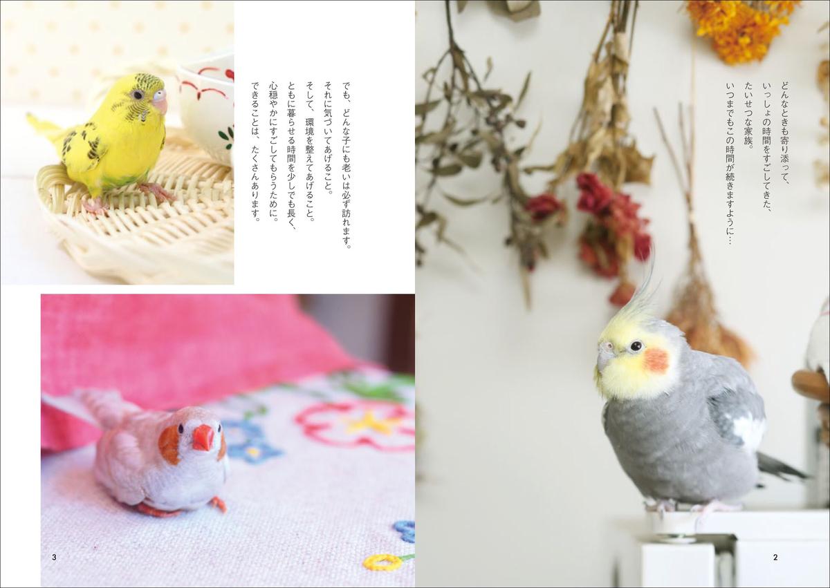 f:id:mojiru:20200521082117j:plain