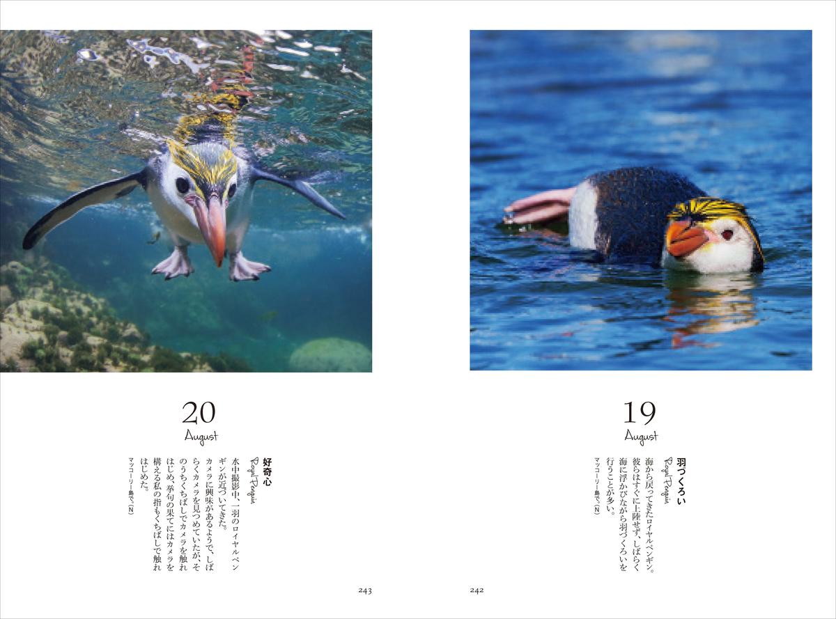 f:id:mojiru:20200529083125j:plain