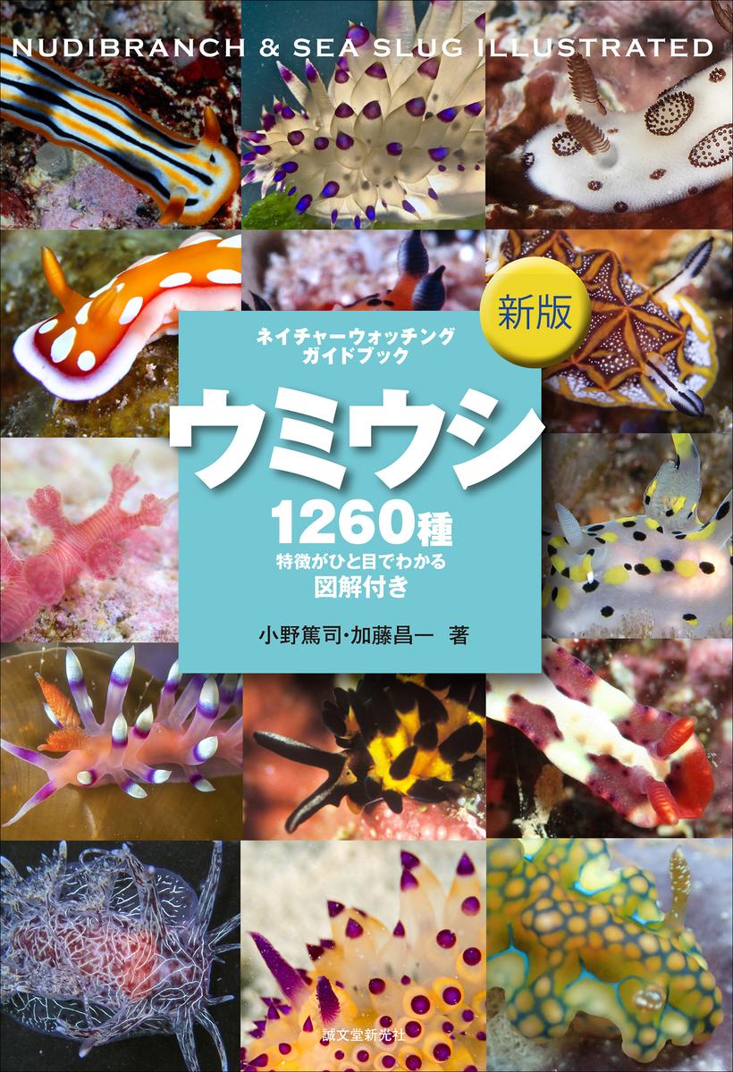 f:id:mojiru:20200601080645j:plain