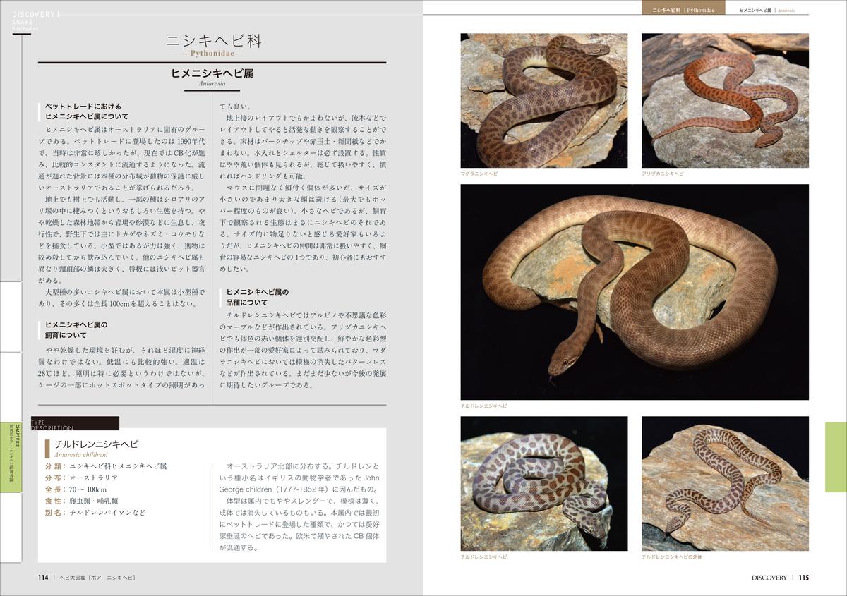 f:id:mojiru:20200618083516j:plain