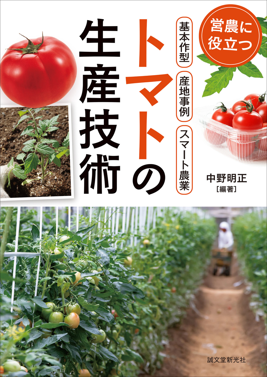 f:id:mojiru:20200730112911j:plain