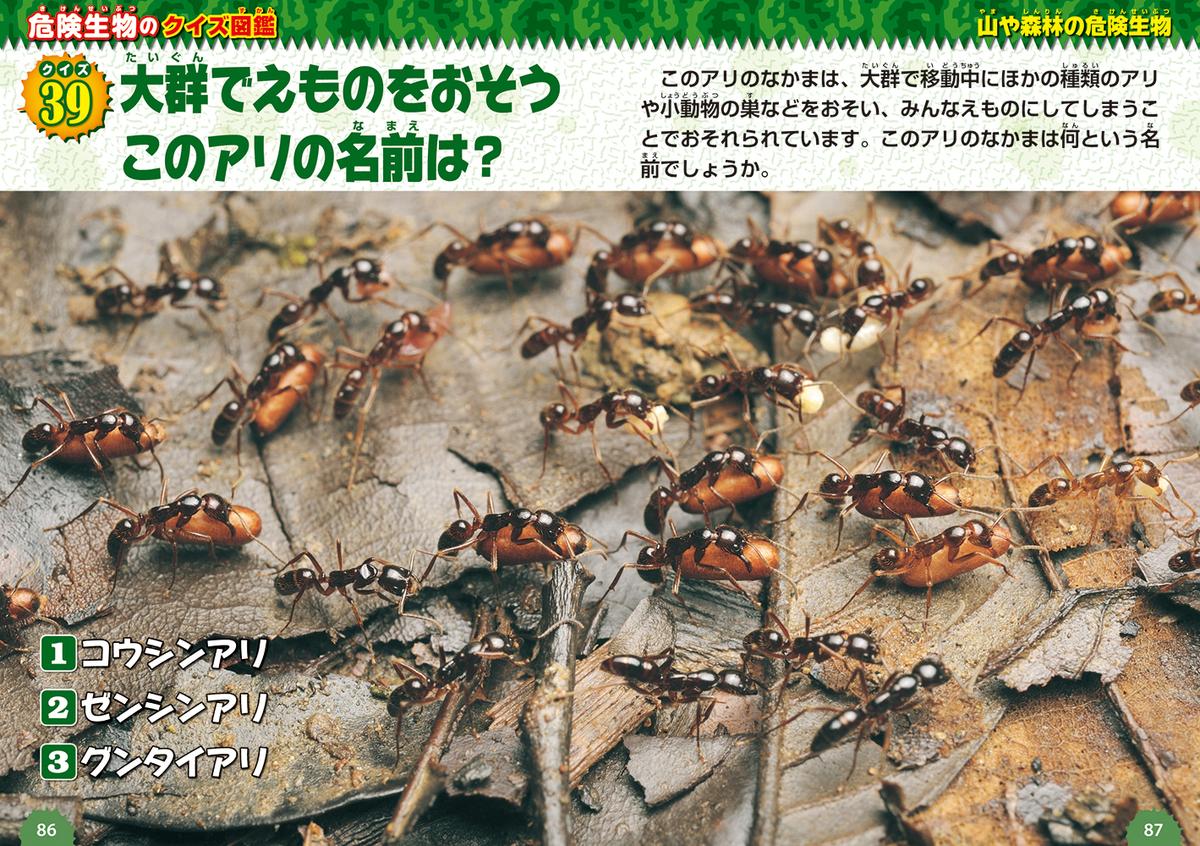 f:id:mojiru:20200807120333j:plain