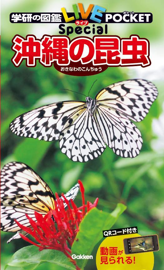 f:id:mojiru:20200811095252j:plain