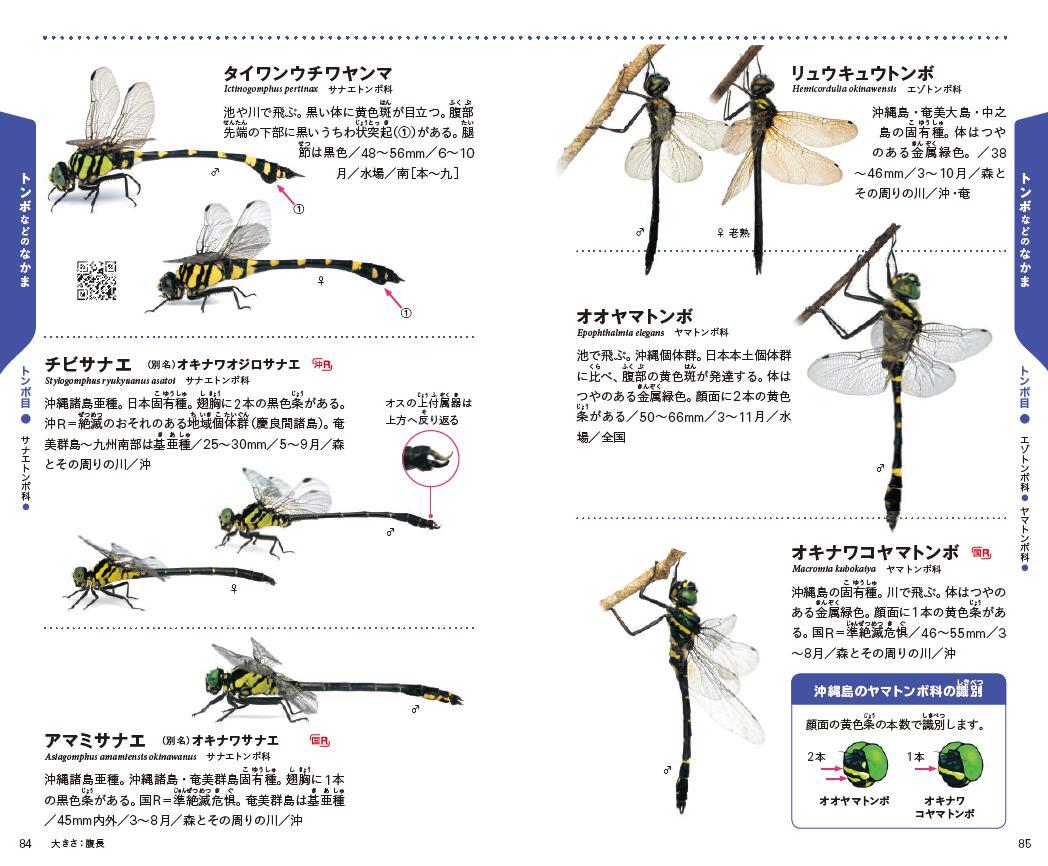 f:id:mojiru:20200811095314j:plain