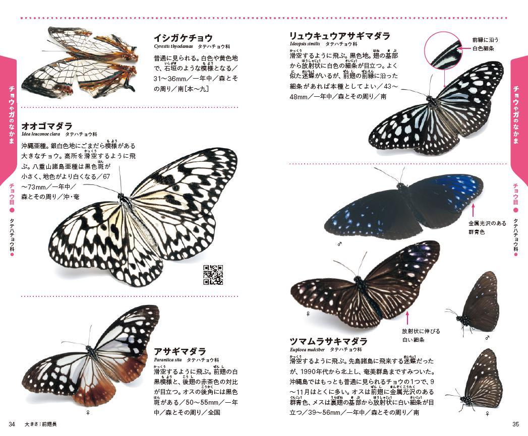 f:id:mojiru:20200811095317j:plain
