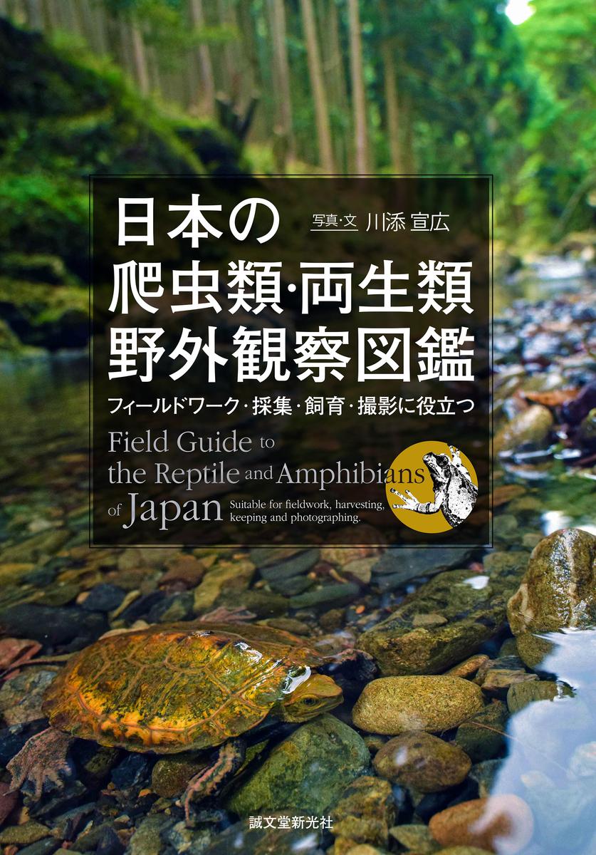 f:id:mojiru:20200812081310j:plain
