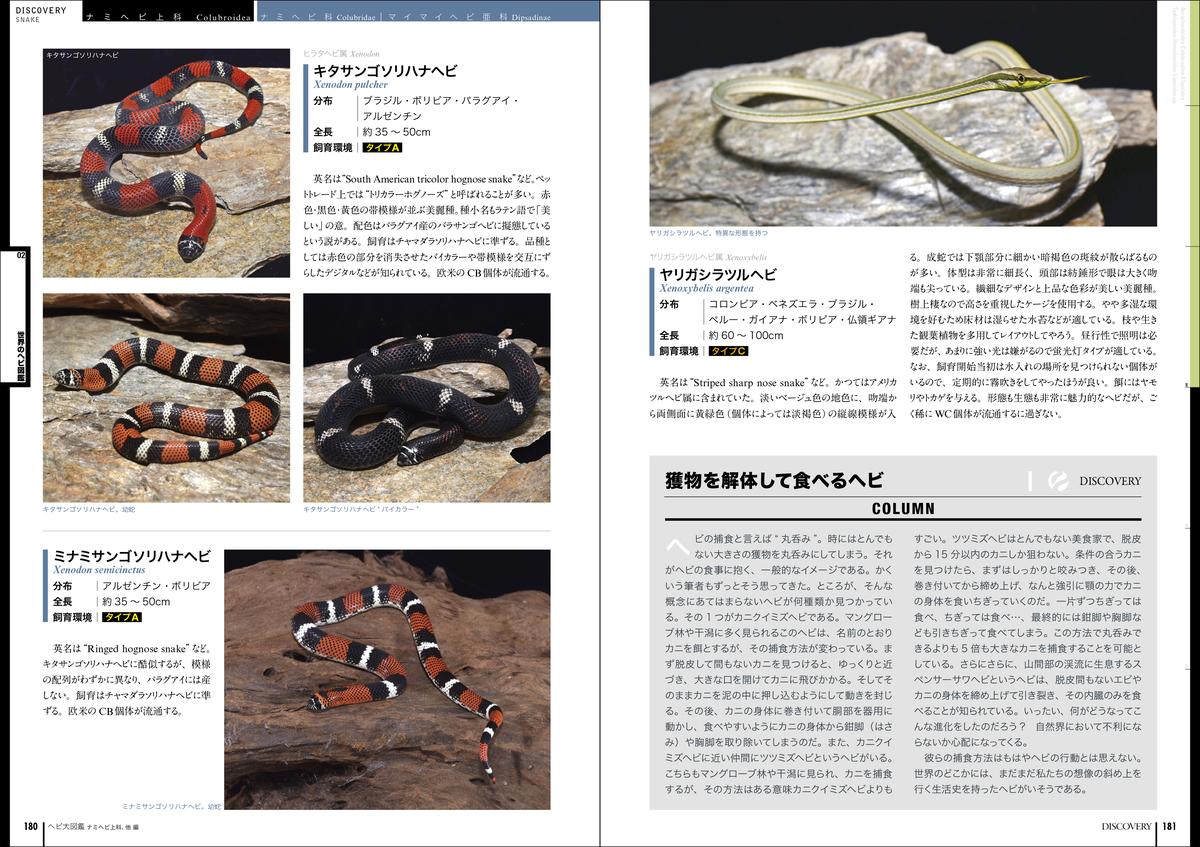 f:id:mojiru:20210519174926j:plain