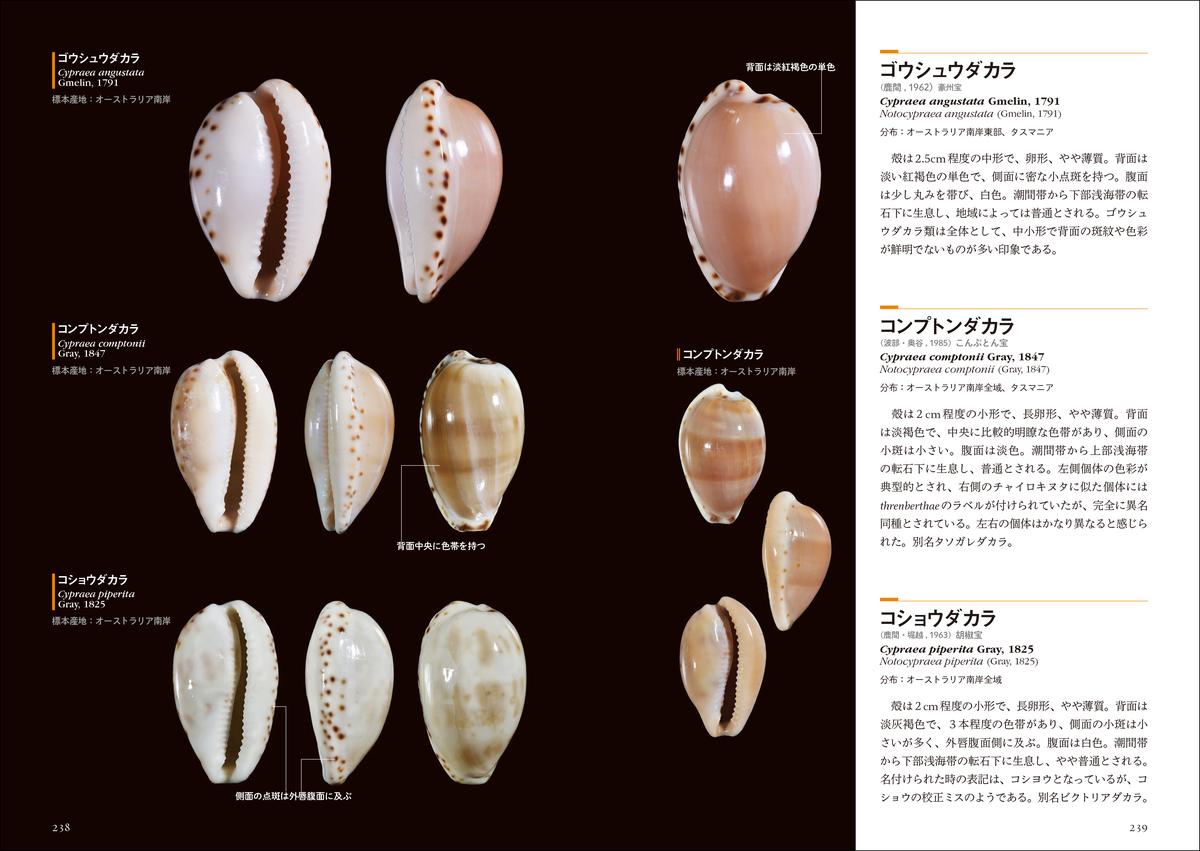 f:id:mojiru:20210609155359j:plain
