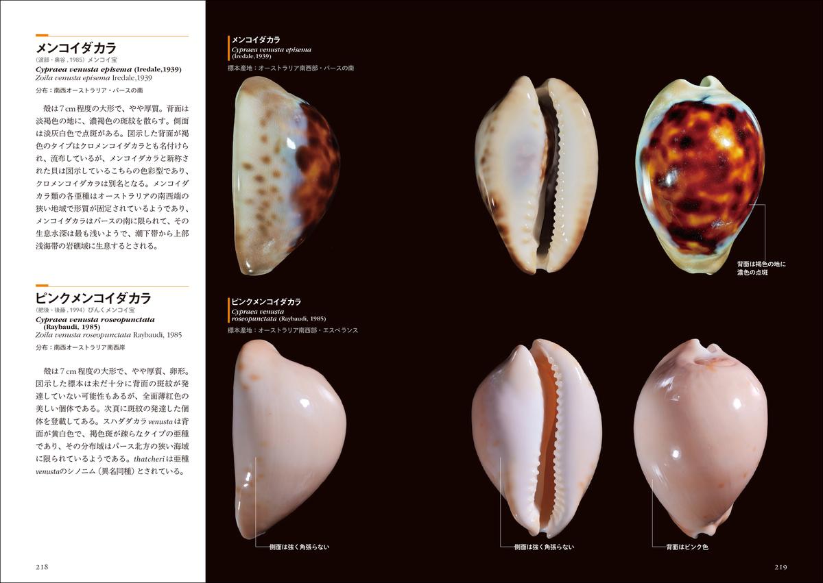 f:id:mojiru:20210609155401j:plain