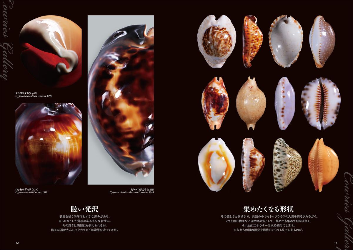 f:id:mojiru:20210609155406j:plain