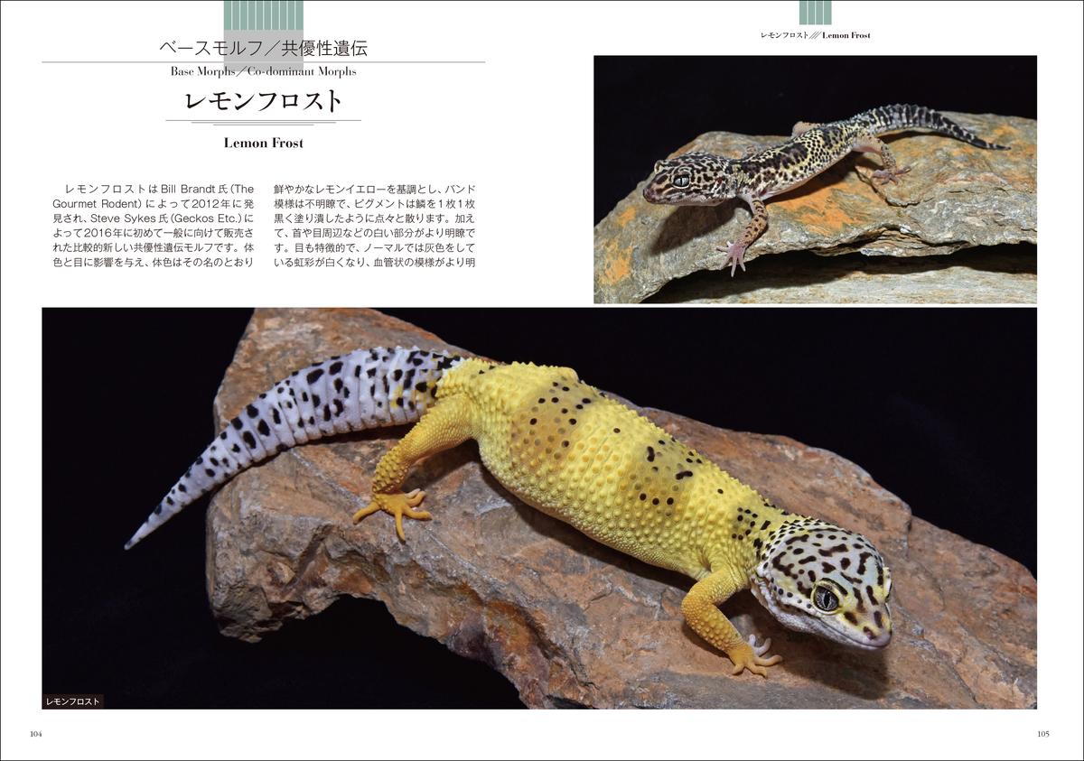 f:id:mojiru:20210812140116j:plain