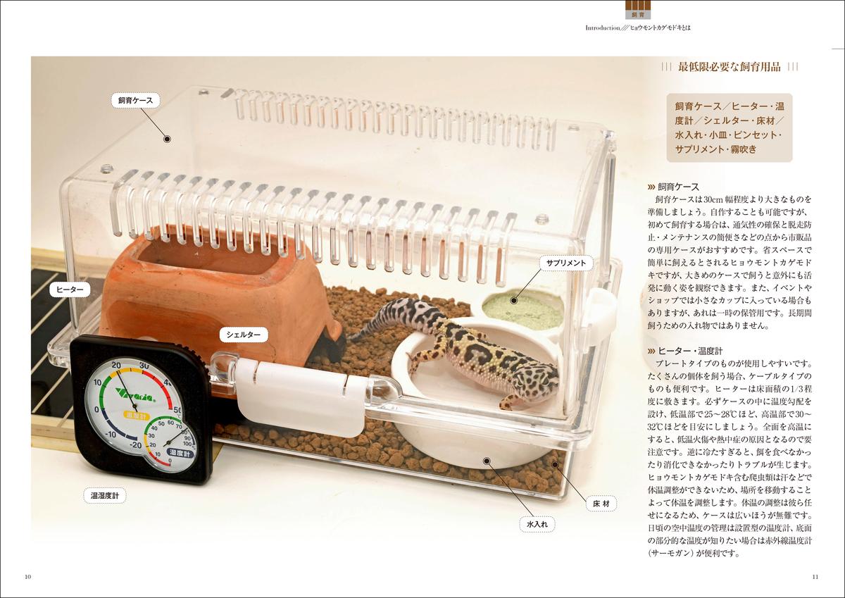 f:id:mojiru:20210812140120j:plain