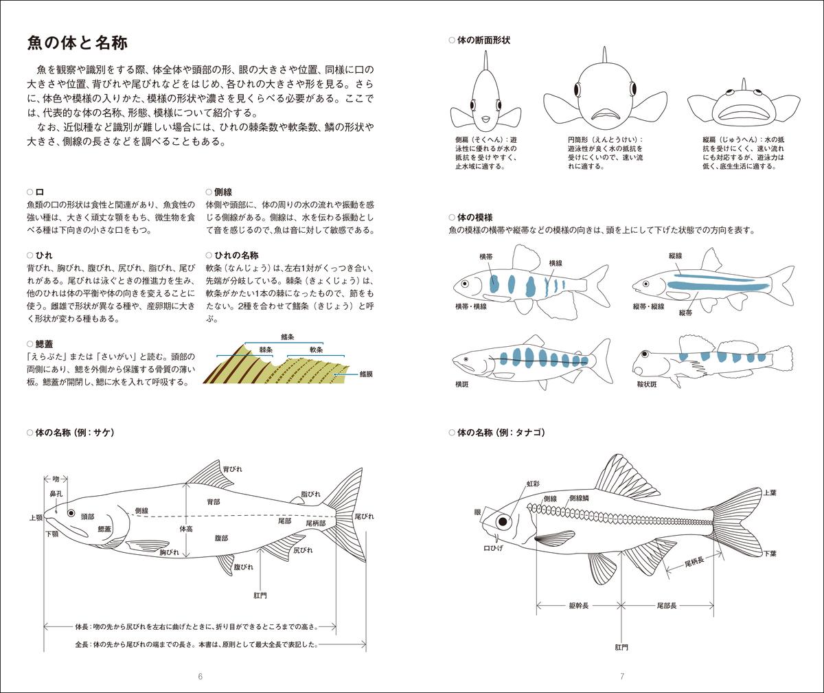 f:id:mojiru:20210906135919j:plain