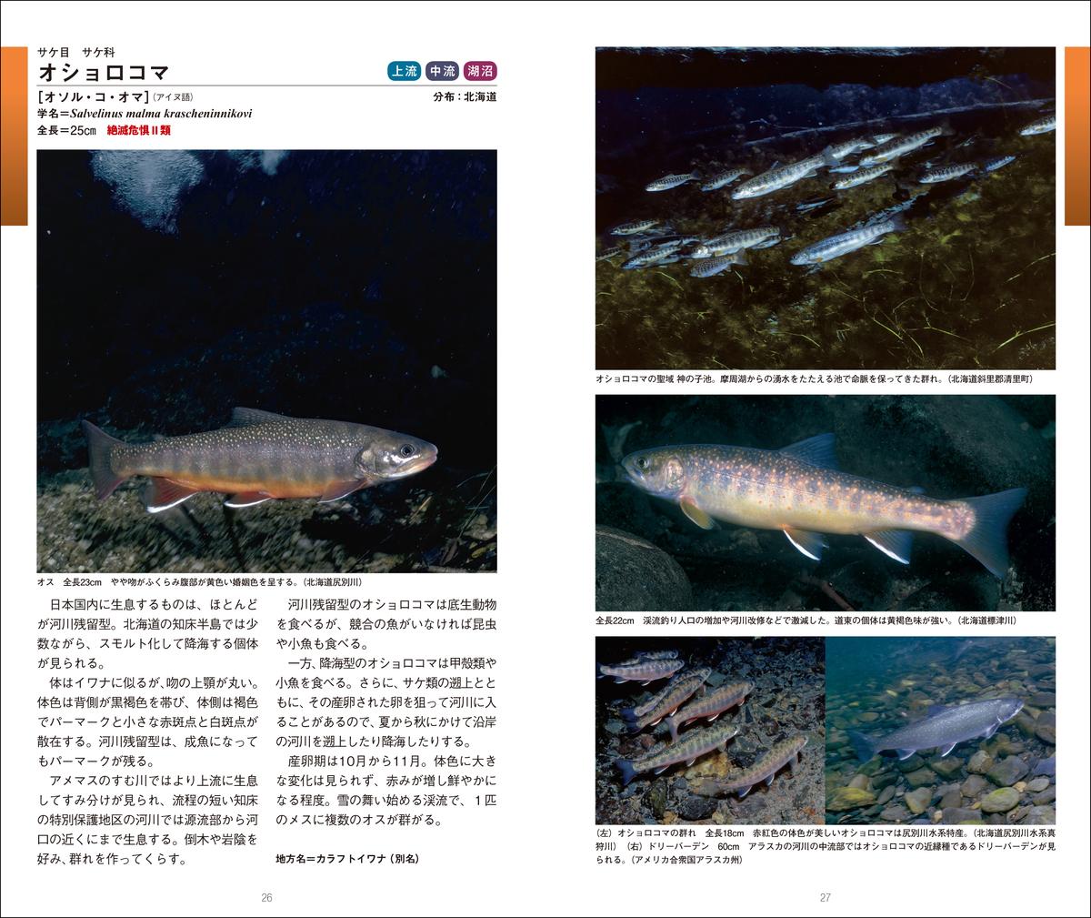 f:id:mojiru:20210906135925j:plain