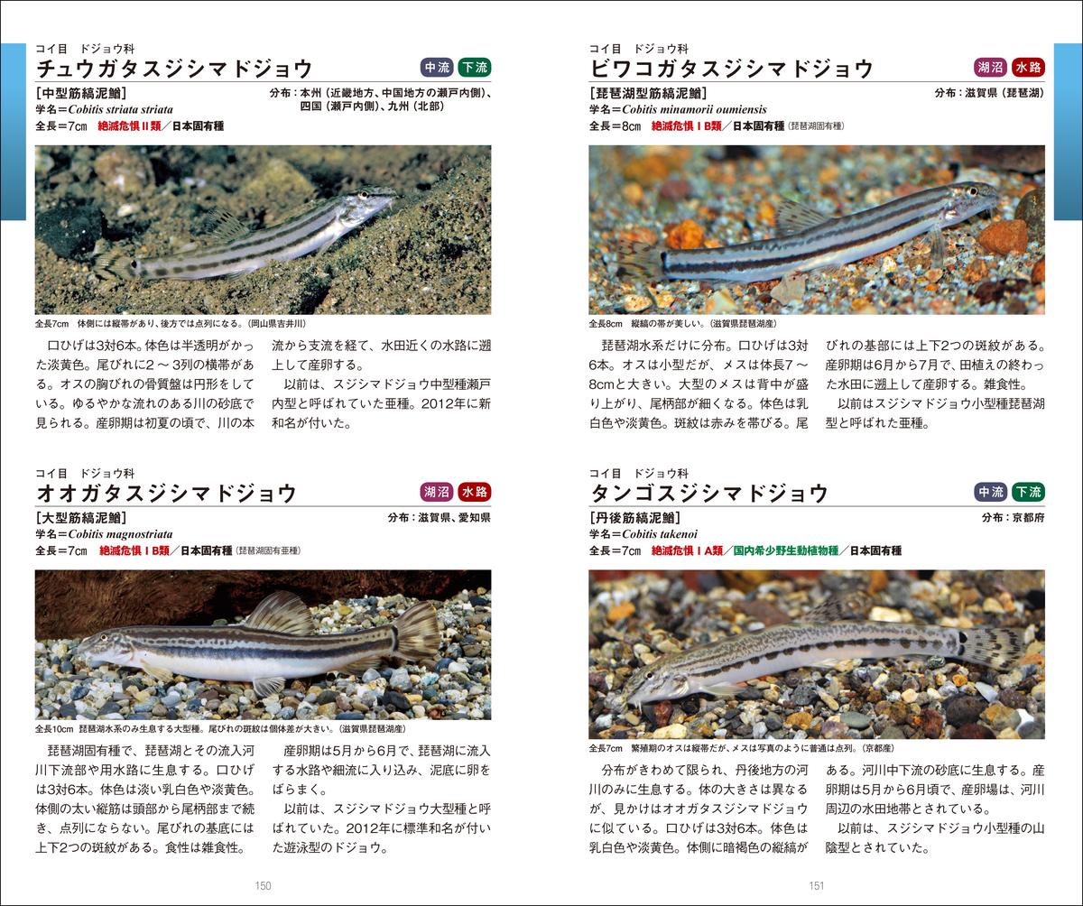 f:id:mojiru:20210906135928j:plain