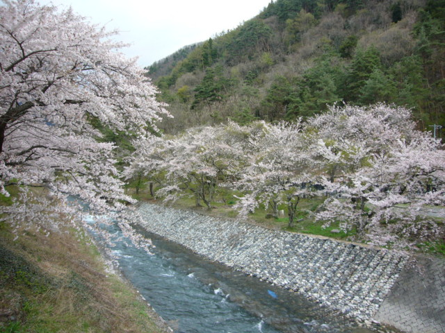 f:id:mokachi99:20110501123129j:image