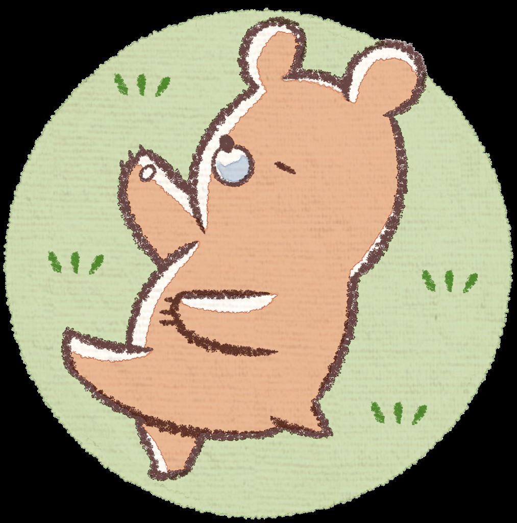 昼寝する熊のイラスト