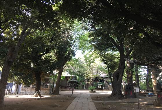 諏訪神社 東京都谷中