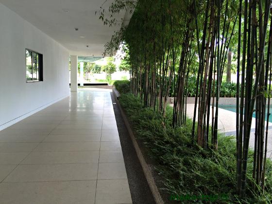 竹林のある廊下