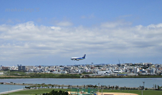 ANA 飛行機着陸