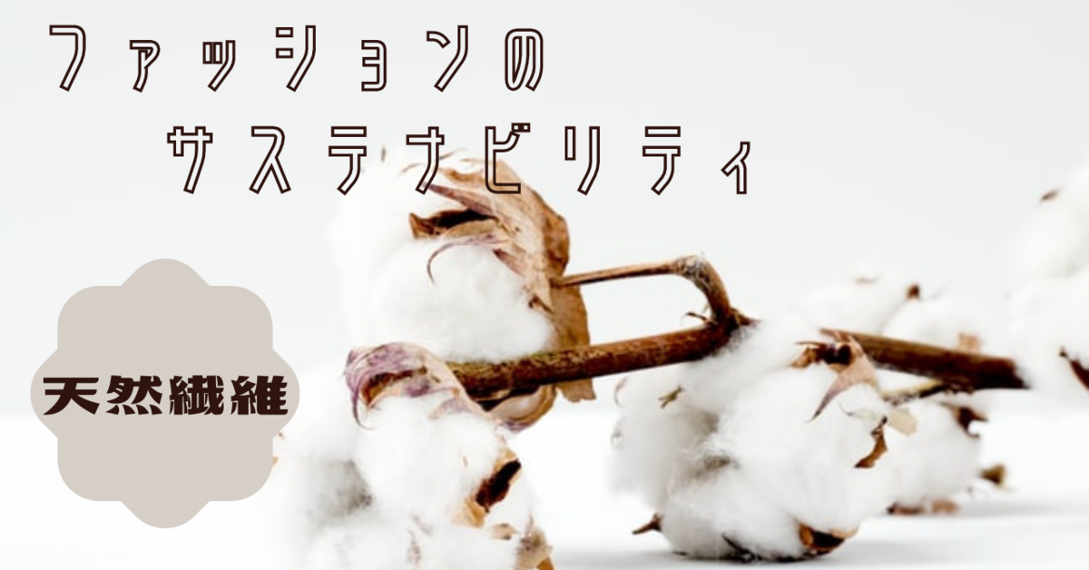 f:id:mokokenomo:20210312184859p:plain