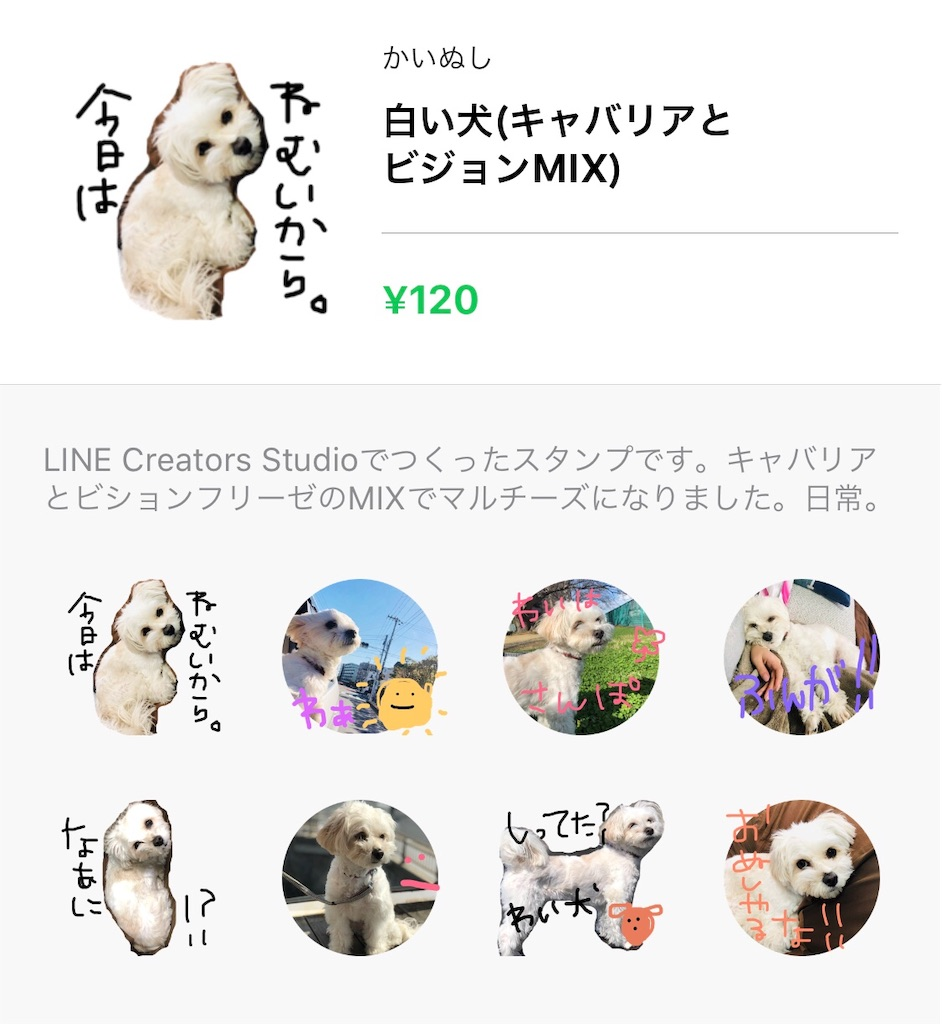 f:id:mokomoko1114:20190328201757j:image