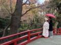 [結婚式][神社][鶴岡八幡宮]鶴岡八幡宮で結婚式