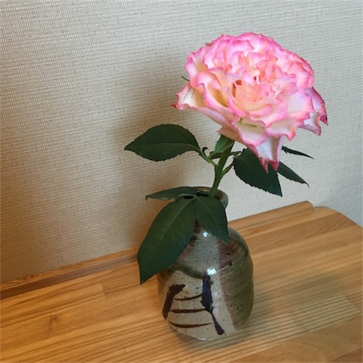 f:id:mokumukumoku:20171102120232j:image
