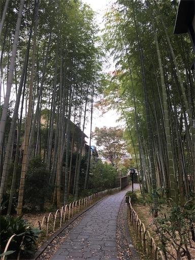 f:id:mokumukumoku:20171102201901j:image