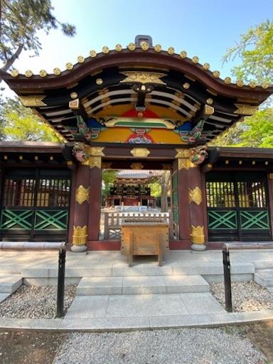 f:id:mokumukumoku:20200515123416j:image