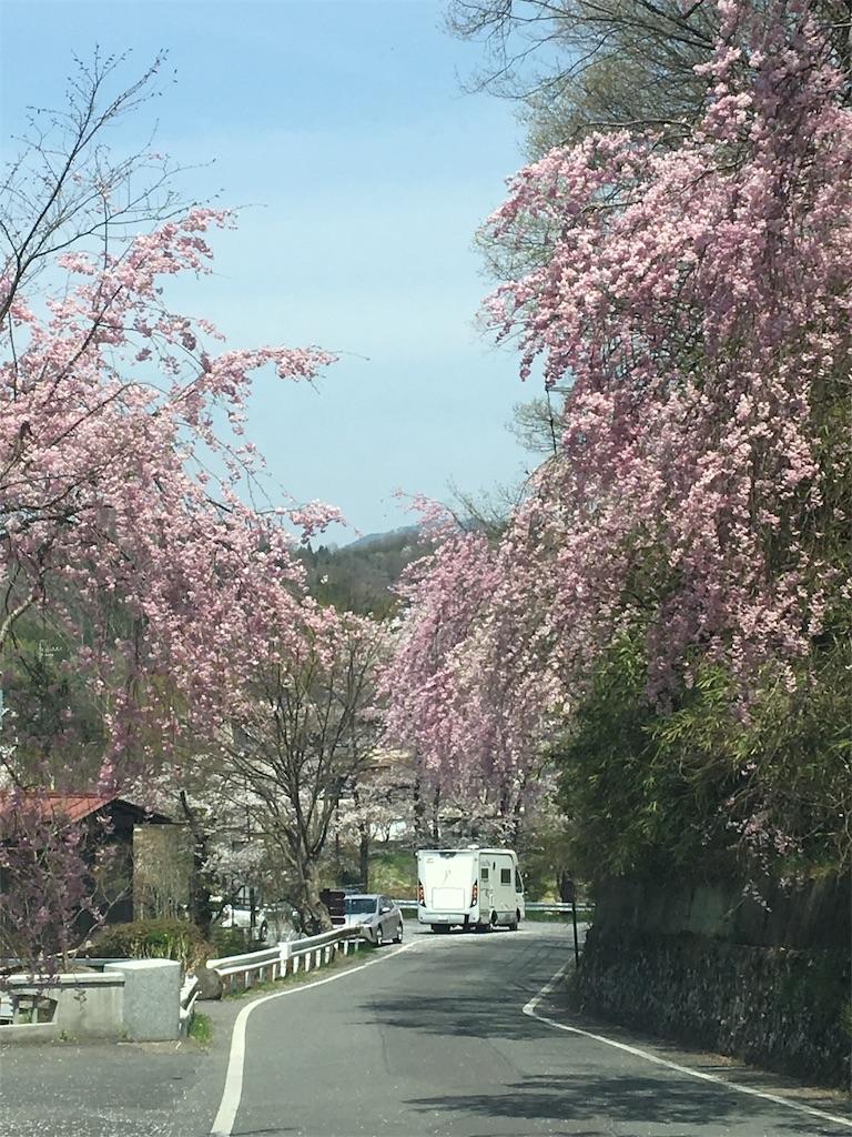 f:id:mokusimoku1616:20190424120848j:image