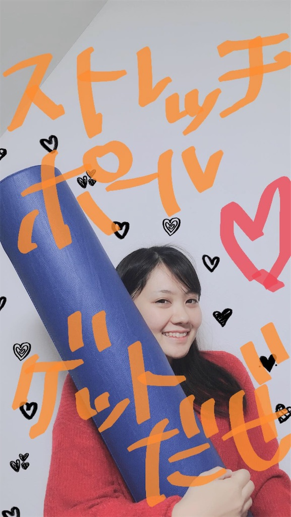 f:id:momiji120909:20181210013811j:image