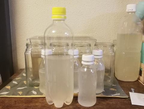 ゾウリムシ培養液とえひめAI原液