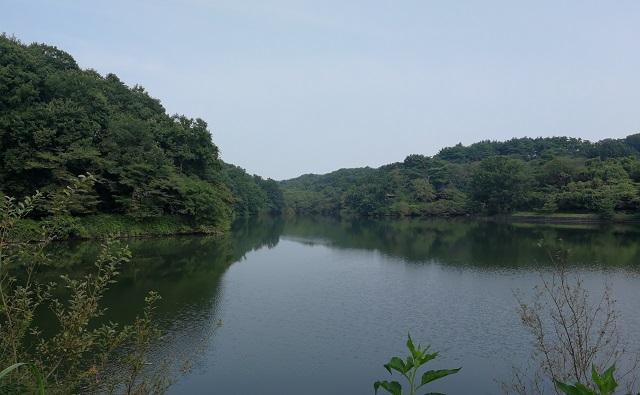 夏の八丁湖