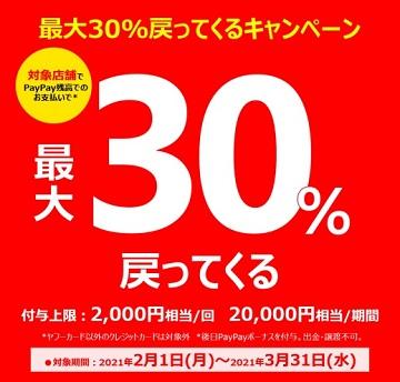 f:id:momijiteruyama:20210214065951j:plain