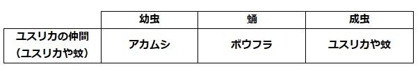 f:id:momijiteruyama:20210809174838j:plain