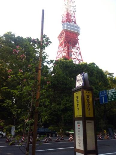 f:id:momo-tokei:20150428184727j:plain