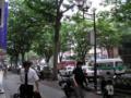 [仙台]青葉通りです。