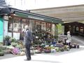 a flower shop, Skogskyrkogården 2015.05.08.