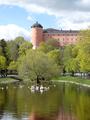 Svandammen, Uppsala 2015.05.09