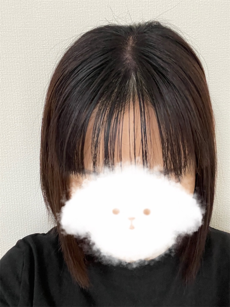f:id:momohatori:20210604091633j:image