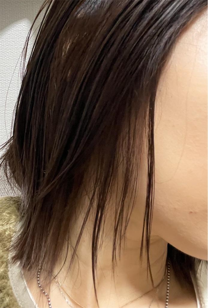 f:id:momohatori:20210604093637j:image