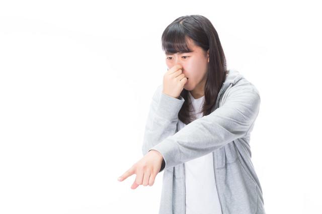 f:id:momoizumi:20190609230015j:plain