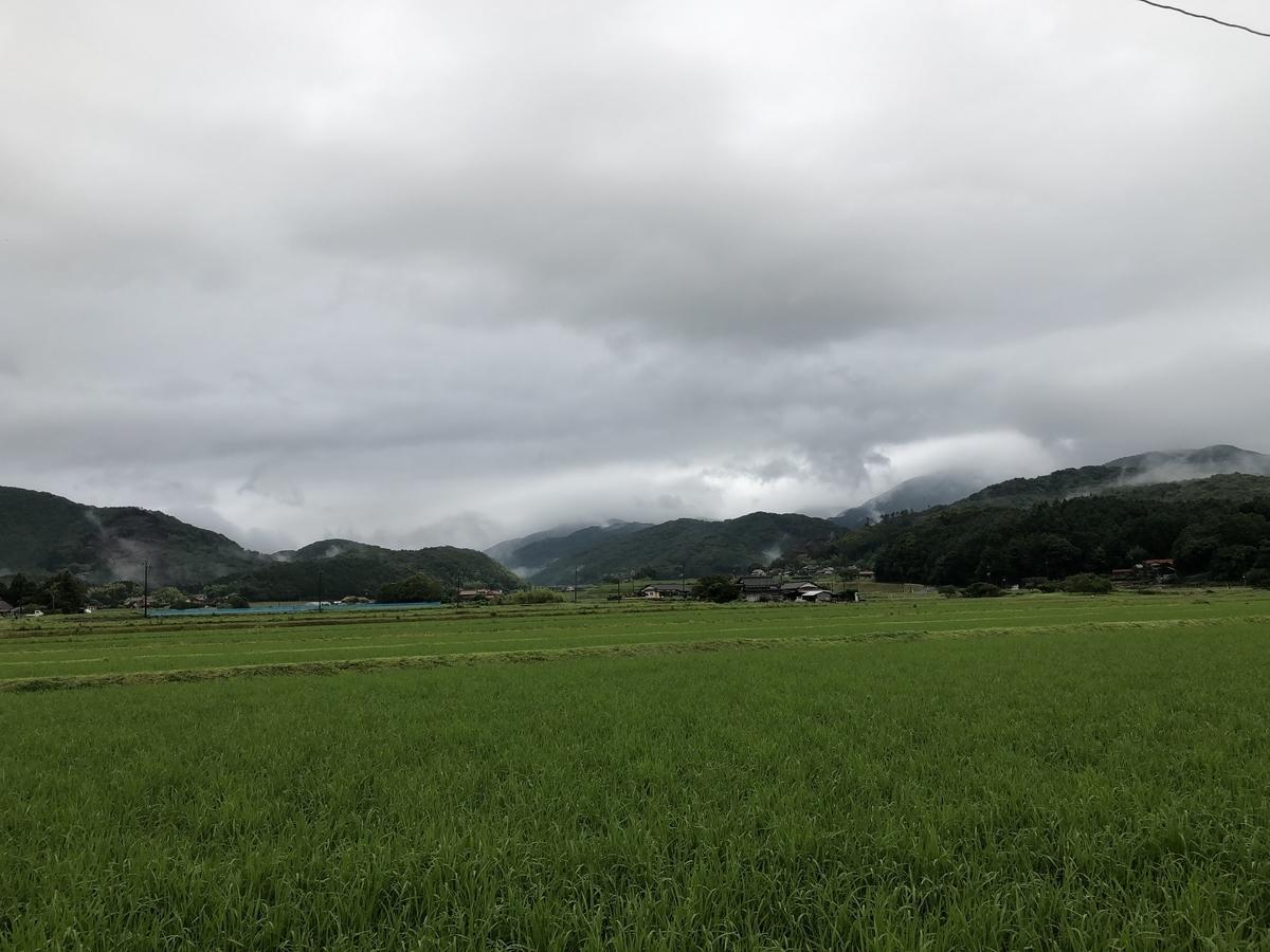f:id:momoji009:20200706104415j:plain