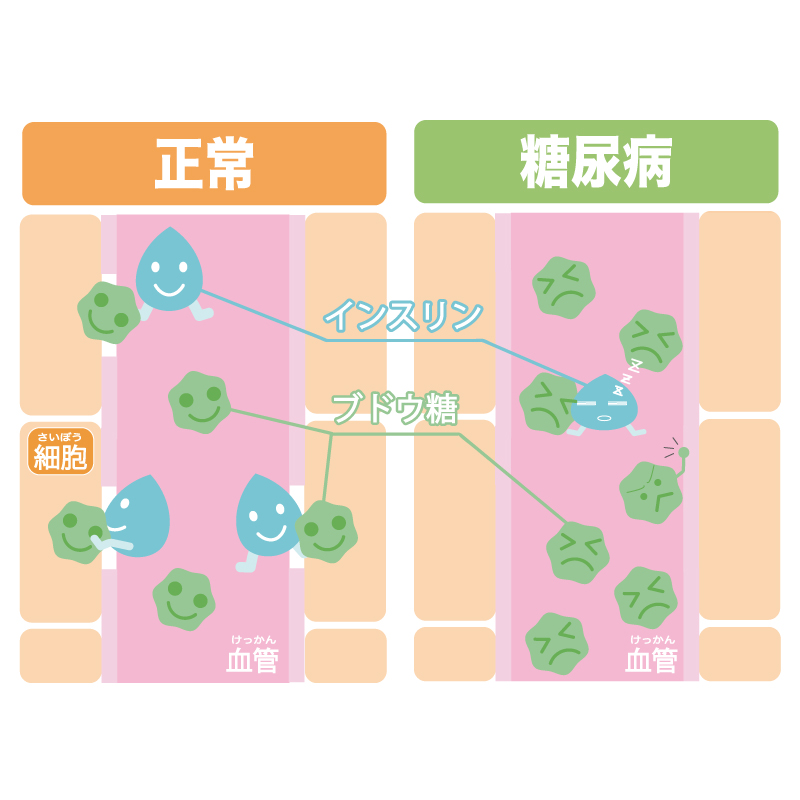 f:id:momoko-nutrition:20191020185242j:plain