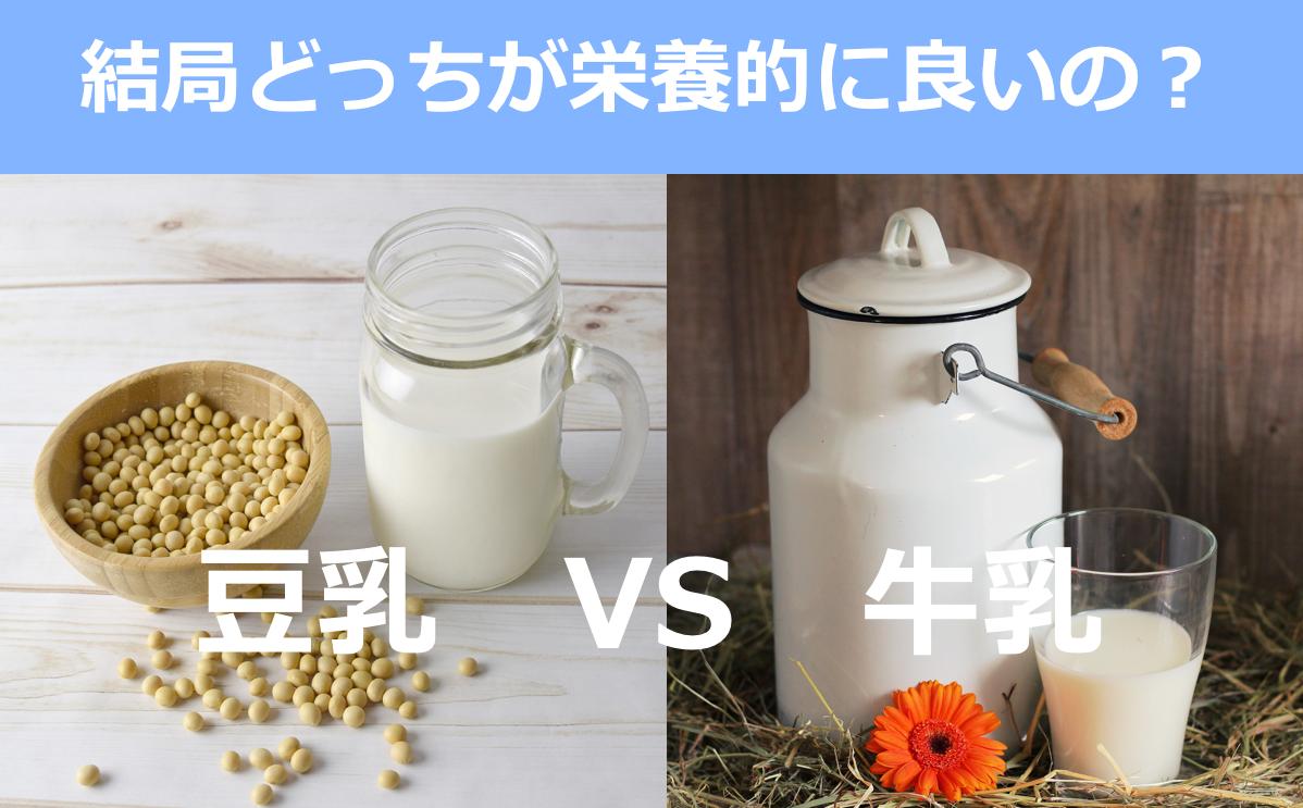 f:id:momoko-nutrition:20191103225732p:plain