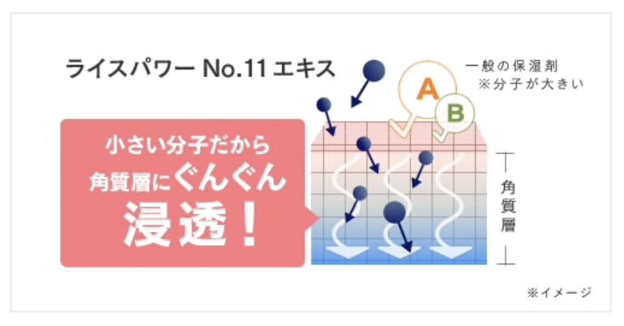 f:id:momoko50:20200530210106p:plain