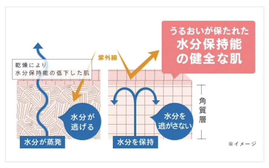 f:id:momoko50:20200530221036p:plain