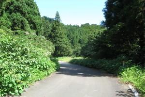 f:id:momokuri3:20090923092731j:image